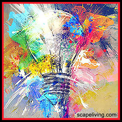 Picture of a light bulb from ScapeLivingdotcom
